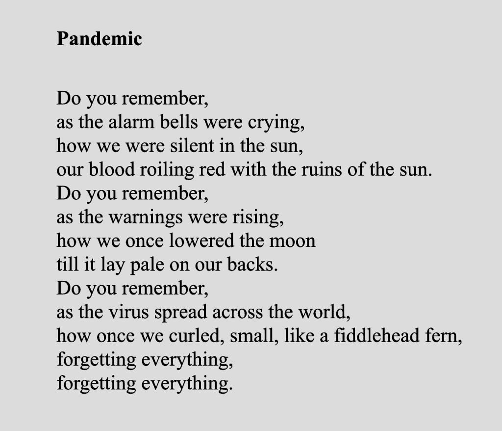 Pandemic  Do you remember, as the alarm bells were crying, how we were silent in the sun, our blood roiling red with the ruins of the sun. Do you remember, as the warnings were rising, how we once lowered the moon till it lay pale on our backs. Do you remember, as the virus spread across the world, how once we curled, small, like a fiddlehead fern, forgetting everything, forgetting everything.  I Walked Out  I walked out on a Sabbath day into these woods that I have called my own. In praise the poplars bare branches raise In this their silvered wintry home.  I looked out over the crest of the hill, to see, where, as a child, I wandered wild, down to the now songless rill, where the mysterious gray dusk once beguiled.  Laying my claim, here I call down my preening pride, for I know that to me nothing has ever belonged. Just the same, you were never mine. For all that is dwells where the Lord's graces throng.  I walked out--not even my body bore my name. Empty hands, empty heart, room for all. My human passions ever tamed, the empty plenum, brimming with God, brings lauds.